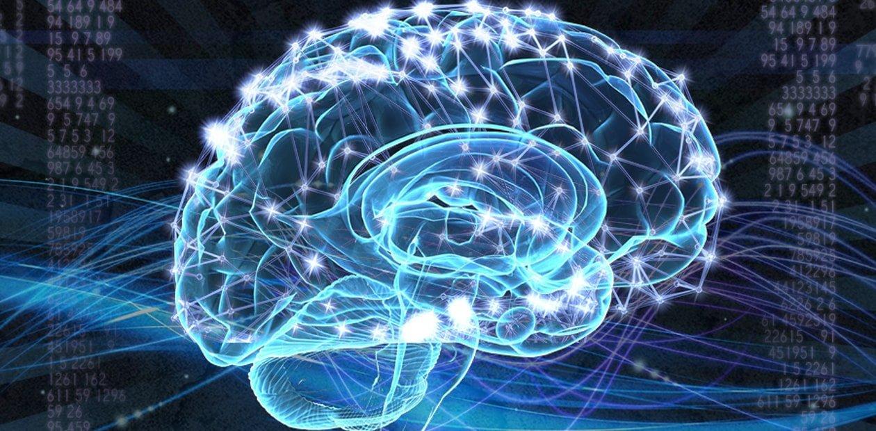 Нервные клетки восстанавливаются от секса