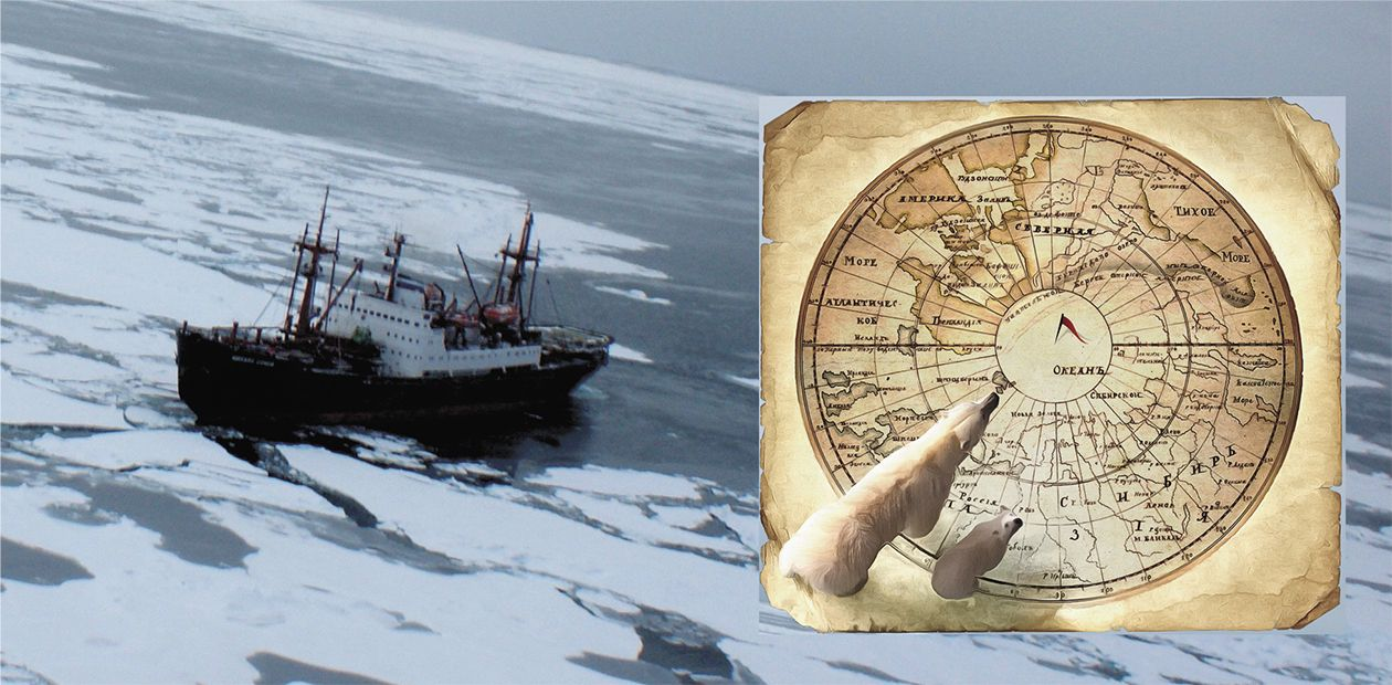 From Arctida to the Present-Day Arctic