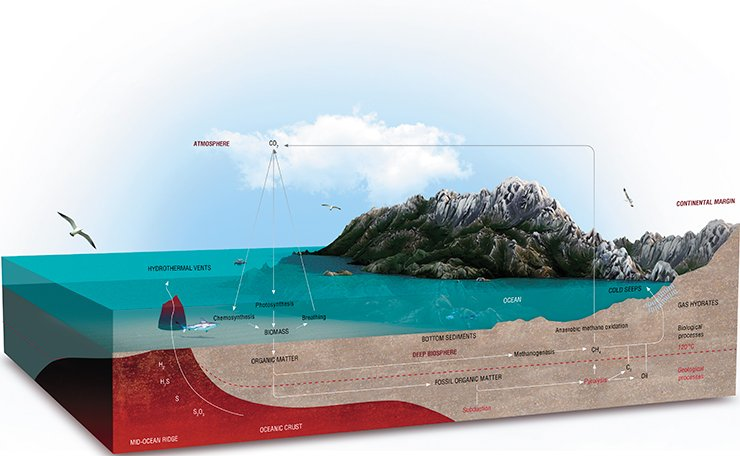The deepwater biosphere, the upper boundary of which lies at a depth of one meter below the sea floor surface, vies for its extent and volume only with the World Ocean, though the living conditions get tougher as the depth increases. The microscopic dwellers of the underground abyss draw energy and matter from mature organics and hot streams of gas-saturated fluids of the deep layers of the lithosphere. From: (Bell, Heuer, 2012)
