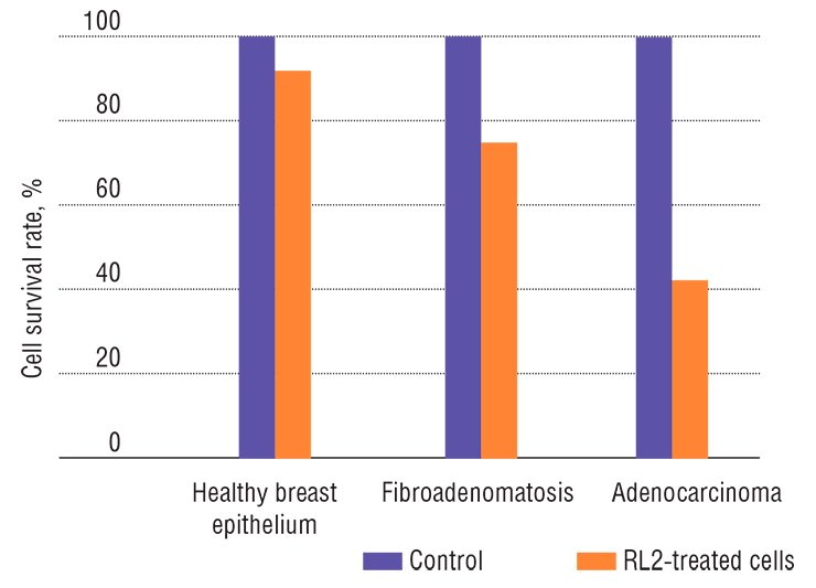 RL2 protein, a genetically engineered analog of lactaptin, has almost no cytotoxic effect on the healthy cells of breast epithelium but initiates apoptosis of the damaged cells once a pathological process develops. In the case of benign fibroadenomatosis, this protein considerably decreases the survival rate of pathological cells and halves the survival rate of cancer cells in adenocarcinoma, a malignant tumor