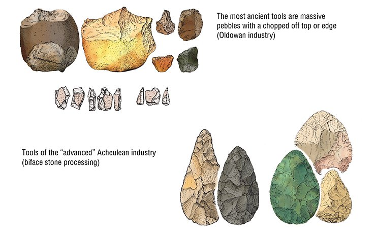 Very few bone relics of ancient hominins have been found so far. The basic materials archaeologists deal with are stone tools. Their examination allows us to trace the improvement of lithic industry and development of human intellectual abilities