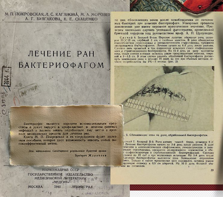 This unique publication summarizes the experience in the use of bacteriophages to treat wounds and purulent infections in the military field conditions during the Russian–Finnish war of 1939–1940. Photo: the title page, the preface and an illustration from the book Treatment of Wounds with Bacteriophage, Moscow: USSR People's Commissariat of Public Health (Narkomzdrav), 1941