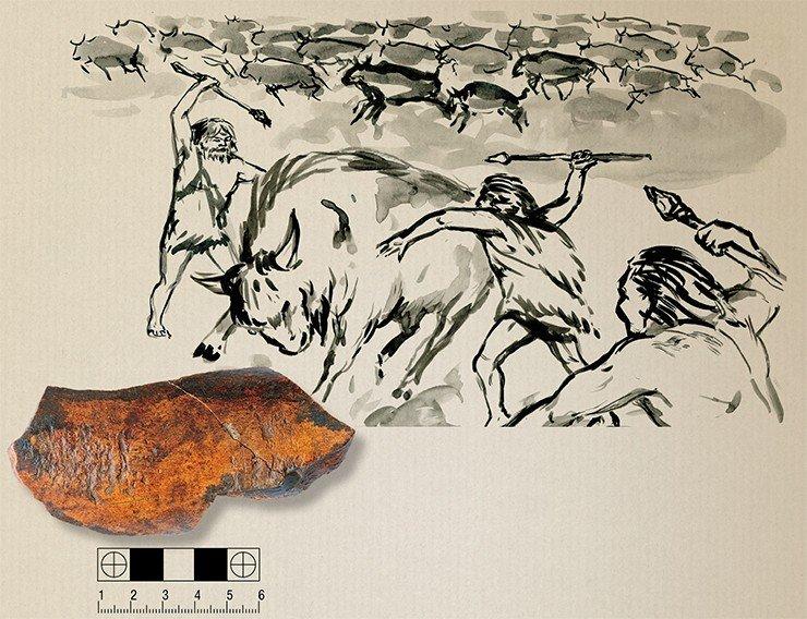 Костяной ретушер – это первый инструмент, который используется для изготовления других орудий. Ретушер из Чагырской пещеры сделан из кости бизона. Фото А. Федорченко. Рис. А. Абдульмановой. Источник: д/ф «Тигирек: эскизы древней истории»