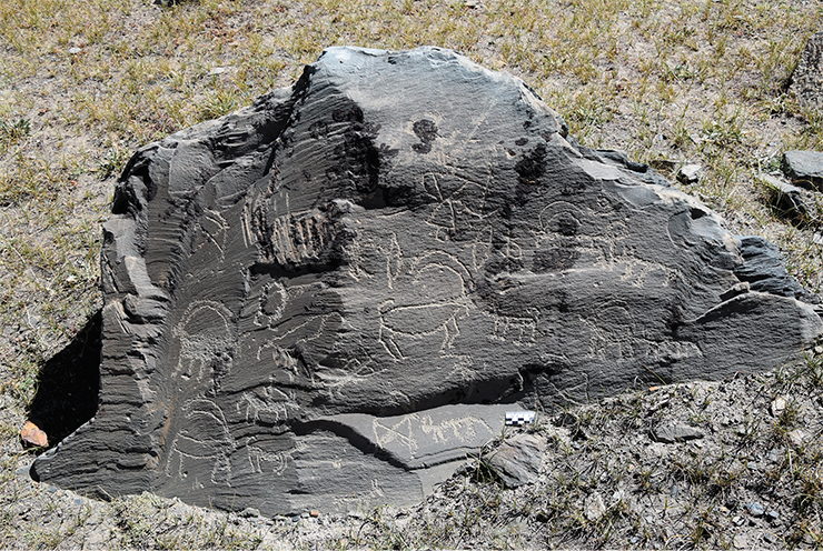 Stone with petroglyphs at the Akshow site. Ibex hunting scenes. The figures include horsemen, unmounted archers, dogs, wolves, and ibexes; the images were created in different styles. Zanskar, 2019