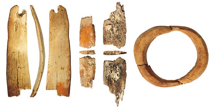 Украшения из бивня мамонта, относящиеся к раннему этапу верхнего палеолита, обнаруженные в 11-м слое южной галереи Денисовой пещеры: фрагменты диадемы (слева)и кольцо (справа). Фото А. Федорченко