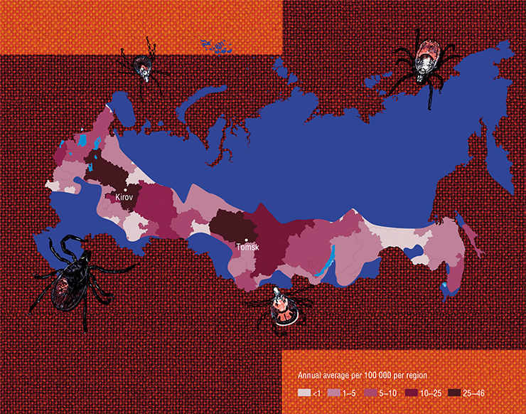 According to data from 1997-2010, tick-borne borreliosis is reported from 73 out of 85 regions of Russia. The highest risk of infection is reported from the basin of the Kama river, in the western Urals piedmont, and in the south of West Siberia (Medico-geographical atlas of Russia Natural focal infections, 2015, mod.)