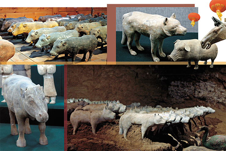 The emperor Jing-di was buried with swarms of terracotta figurines representing various livestock. There are all sorts of domestic animals known to man in the Yangling mausoleum. Judging by the number and variety of dog breeds, apparently exceeding all reasonable needs of herders and hunters, some of them had culinary value, while other were used in battles and for protection
