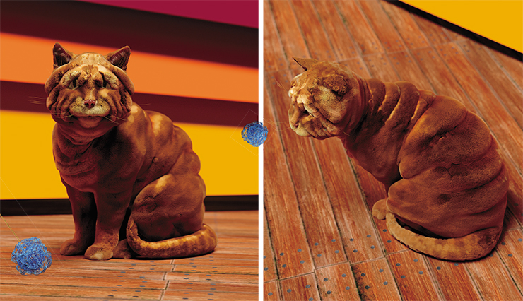 What about the Shar-Pei cat? We know that Shar-Pei dogs have a mutation that causes excess production of a polysaccharide called hyaluronan. This mutation consists in a duplication (or series of duplications) upstream of the HAS2 gene, which encodes an enzyme called hyaluronan-synthetase (Olsson et al., 2011). We find the HAS2 gene in the cat genome, prepare the necessary gene engineering structure and inject it into fertilized eggs, which we implant in a surrogate mother. The designer must keep in mind that shar-pei-ness will be a bad match with long hair, but Rex and Sphynx cats will look really nice with wrinkles. Photo and editing: G. Borodin
