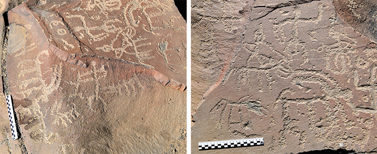 The most ancient images include drawings in the so-called linear style. Simple techniques were used to depict not only ibexes (although they prevail) but also other animals: horses, dogs, wolves. Ibex hunting scenes created in a linear style. Solar symbols appear on the same surface. Akshow, Zanskar, 2019