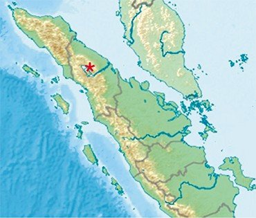 Toba Supervolcano in the north of the central part of the Sumatra Island, IndonesiaThe authors have built a detailed seismic model for the structure of the crust and mantle beneath the Toba Caldera using the seismic tomography method developed in Novosibirsk. The model helped reveal a multilevel plumbing system beneath the caldera and reconstruct the mechanism underlying the recurrent supereruptions