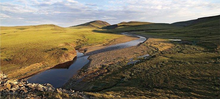essay on tundra region Tundra Climate