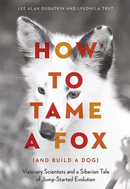 The full name of the book published in 2017 by the University of Chicago Press is eloquent and informative: How to Tame a Fox (and Build a Dog): Visionary Scientists and a Siberian Tale of Jump-Started Evolution