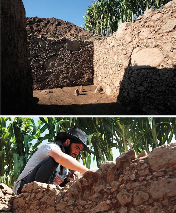 Границы раскопа не могли выходить за границы поля, которое было арендовано у местного крестьянина на период исследований. 2017 г.