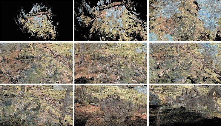 Several plane projections of a coloured 3D point cloud of an area of the Gool site obtained with the help of surface laser scanning and containing exhaustive information concerning the geometry of the objects, their spacing and micro-relief of the locality