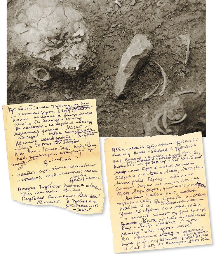 A Neanderthal's skull (top). Teshik-Tash, 1938. Archive of the Institute of Material Culture, St Petersburg. An excerpt from A. P. Okladnikov's journal. Uzbekistan, 1938. St Petersburg Branch, Archive of the Russian Academy of Sciences