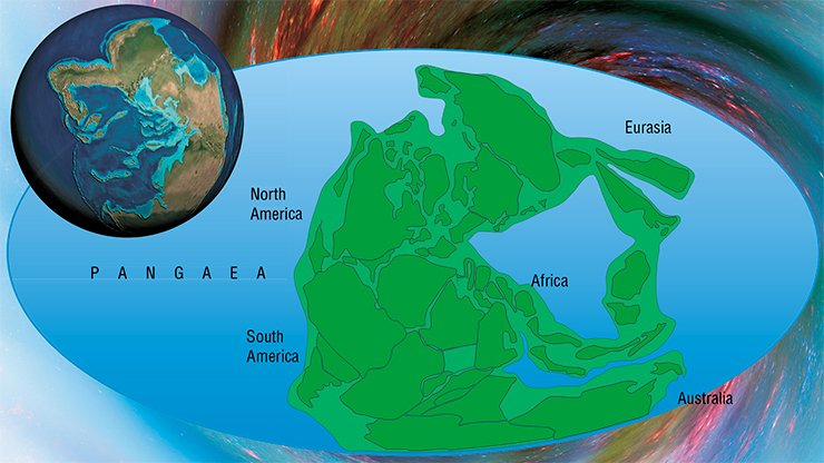 Convection flows in the Earth's mantle drive tectonic plates. Their movement causes the assembly and dispersal of supercontinents. The last supercontinent, Pangaea, is schematically shown