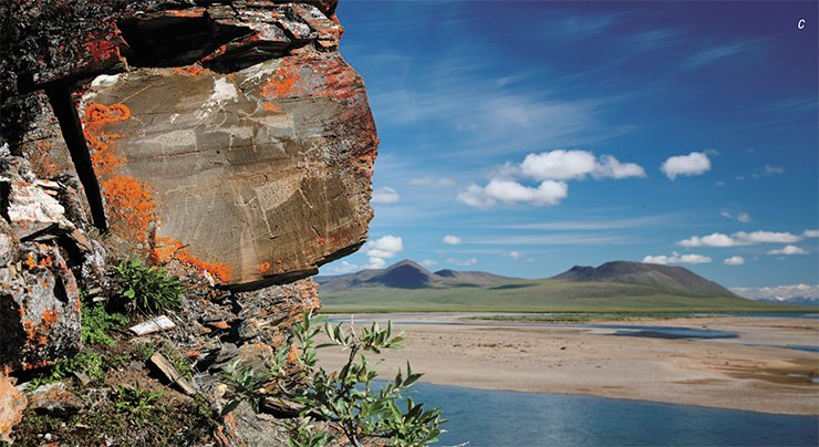 "The beauty of ancient rock images at the Pegtymel River in Chukotka was revealed to fascinated viewers by a modern restoration technique of making backup copies. Researchers made a silicone matrix of the stone surface, which was covered with a washable protective compound. The matrix was used to make a copy in volume and colors. The quality of the copy is such that even experienced professionals are not always able to ""find 10 differences."" Top right: a restorer making a silicone matrix; (a) and (b) acrylic-tinted three-dimensional polyurethane copies; (c) Pegtymel petroglyphs. E. Girya and E. Devlet © IA RAS"