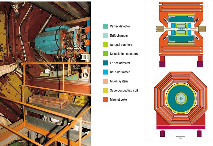 Detector in the operating (closed) condition and during assembly/disassembly